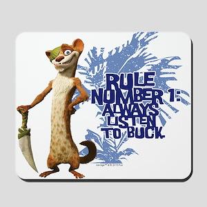 Ice Age Rule Mousepad