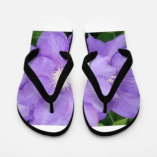 Purple Clematis Flip Flops