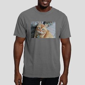 tabby cat Simba T-Shirt