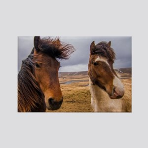 Horses of Iceland Rectangle Magnet