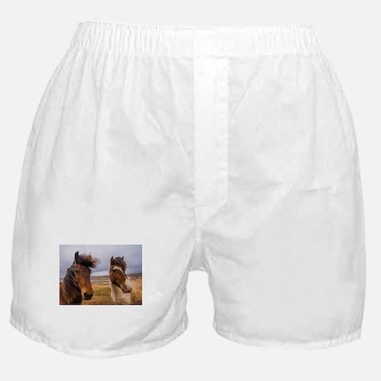 Icelandic horses Boxer Shorts