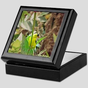 Goldfinch Keepsake Box