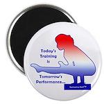 Gymnastics Magnets (10) - Training