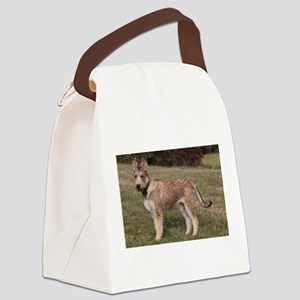 berger picard puppy Canvas Lunch Bag