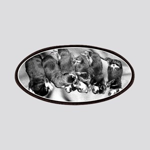 sleepyhead rottweiler pups Patch