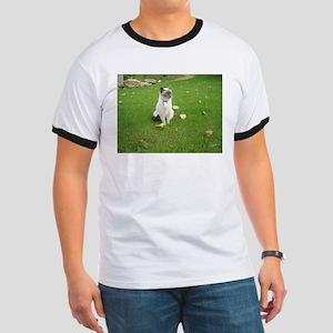 birman sitting T-Shirt