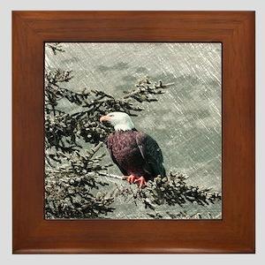 rustic trees american eagle Framed Tile