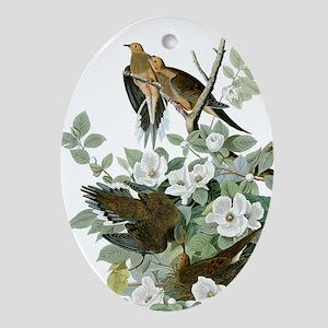 Carolina Pigeon John James Audubon Birds Ornament