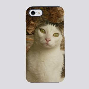 cat has green eyes and is lo iPhone 8/7 Tough Case
