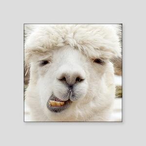 Funny Alpaca Smile Sticker