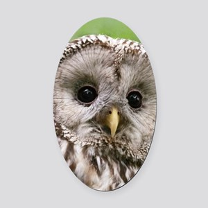 Owl See You Oval Car Magnet