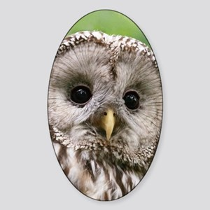 Owl See You Sticker (Oval)