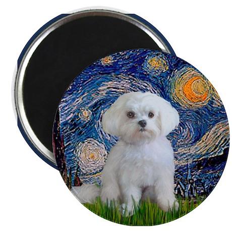 Starry Night / Maltese Magnet