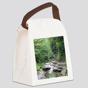 forest river scenery Canvas Lunch Bag