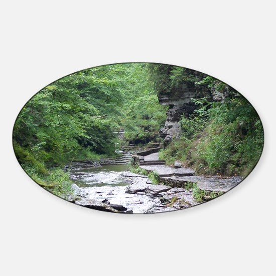 forest river scenery Decal