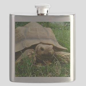Sulcata Tortoise Flask