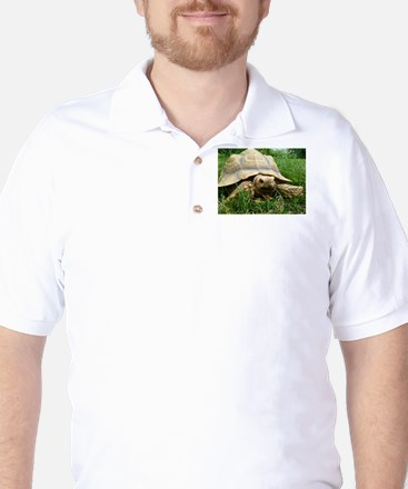 Sulcata Tortoise Golf Shirt