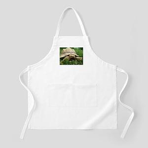 Sulcata Tortoise Apron