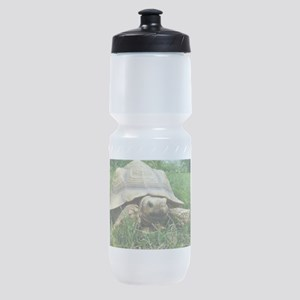 Sulcata Tortoise Sports Bottle