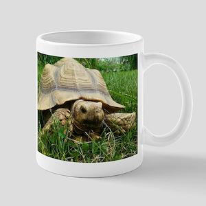 Sulcata Tortoise Mugs