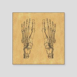 Vintage Foot Bones Sticker