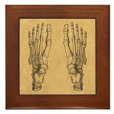 Vintage Foot Bones Framed Tile