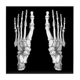 Foot anatomy Tile Coasters