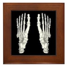 Foot Bones Framed Tile