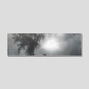 Bat Grave Night Car Magnet 10 x 3