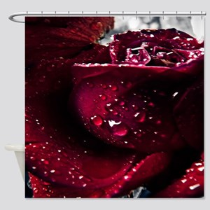 Water on rose Shower Curtain