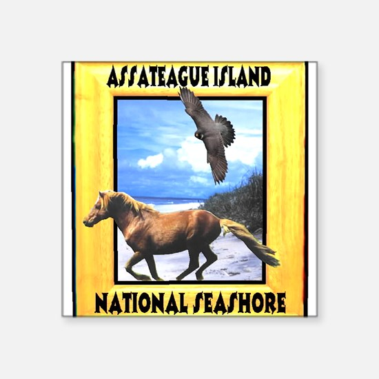 "Cute Channel islands national park Square Sticker 3"" x 3"""