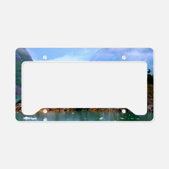Cute Waterfalls License Plate Holder