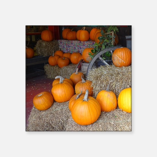 Pumpkin scene Sticker