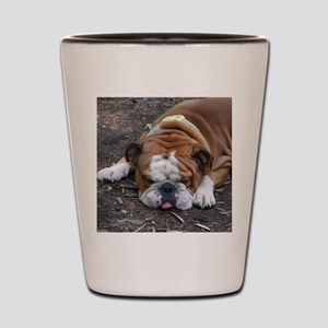 Tuckered Out Shot Glass
