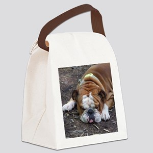 Tuckered Out Canvas Lunch Bag