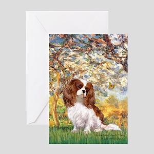 Spring & Cavalier Greeting Card