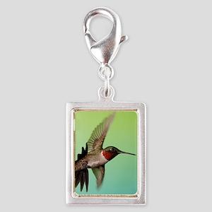 Ruby-Throated Hummingbird Silver Portrait Charm