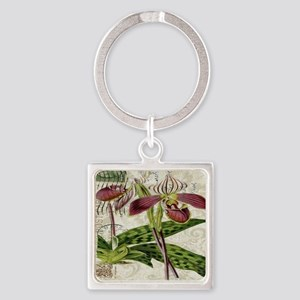 vintage french botanical orchid Square Keychain