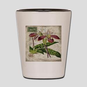 vintage french botanical orchid Shot Glass