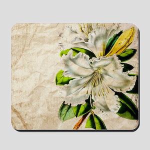 french botanical white lily Mousepad