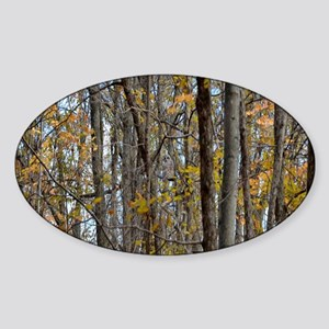 forest trees Camo Camouflag Sticker