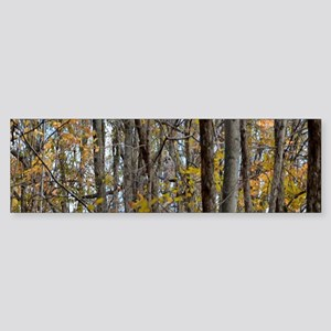 forest trees Camo Camouflage Bumper Sticker