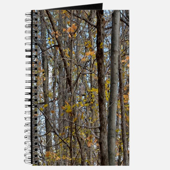 Autmn trees Camo Camouflage Journal