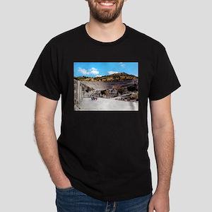 A Stadium View T-Shirt