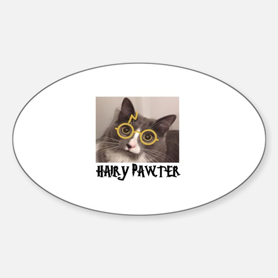 CATS - HAIRY PAWTER Sticker (Oval)