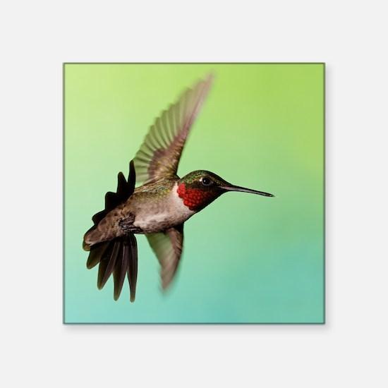 "Ruby-Throated Hummingbird Square Sticker 3"" x 3"""