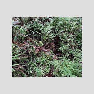 Redwood Rainforest Ferns Throw Blanket