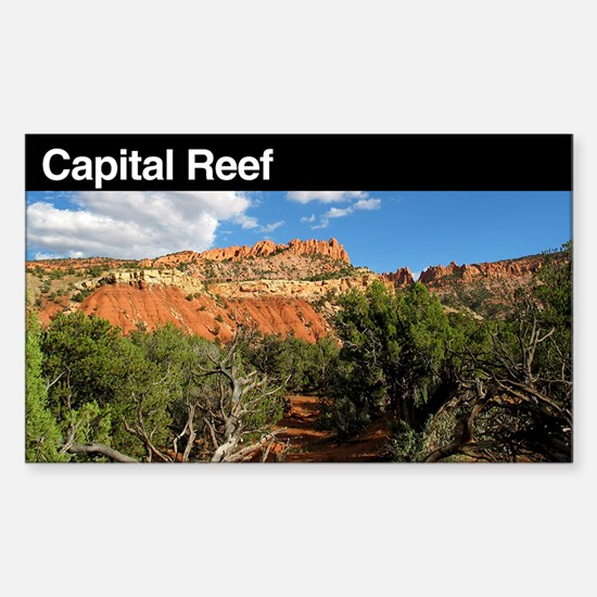 Capital Reef National Park Rectangle Decal