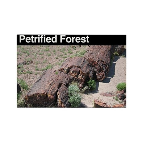 Petrified Forest NP Rectangle Magnet