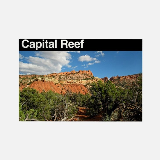 Capital Reef NP Rectangle Magnet